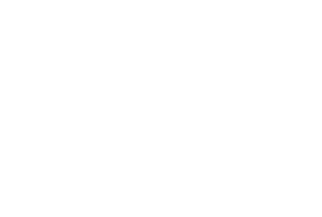 The Stadium Colleciton